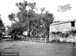 Abbey, The Walnut Tree 1919, Old Cleeve