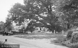 Orcop Hill, The Fountain Oak c.1955