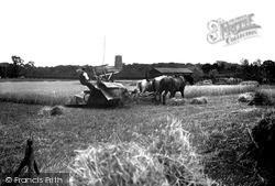 Ormesby St Margaret, Harvest Time Near The Church c.1930