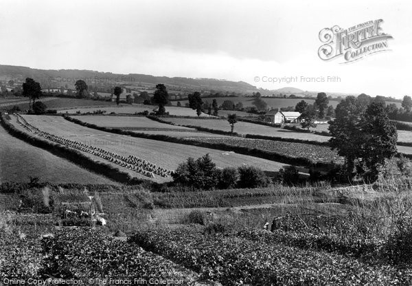 Ottery St Mary, Sidmouth Gap from Tip Hill 1922