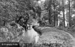 The Mill Stream c.1955, Ottery St Mary