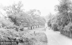 Green Lane c.1960, Oxhey