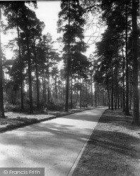Oxshott, Sandy Lane, The Heath c.1965