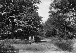 Oxshott, Woods 1904