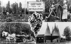 Paddock Wood, Greetings From The Hop Fields Of Kent c.1955