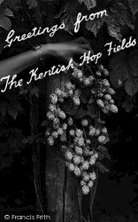 Paddock Wood, Greetings From The Kentish Hop Fields c.1955