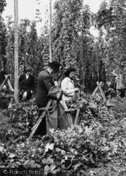 Paddock Wood, Hop Pickers c.1950