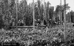 Paddock Wood, Hop Pickers c.1955