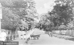 Palmers Green, Aldermans Hill c.1900