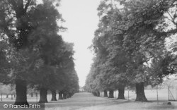 Palmers Green, The Avenue, Broomfield Park c.1960