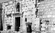 Palmyra photo