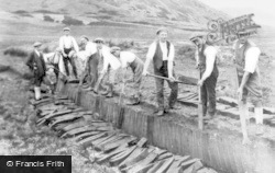 Parc, Peat Cutting At Cwmtylo c.1925