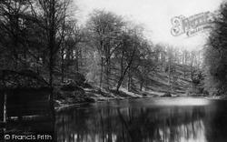Pateley Bridge, Whitewood Fishpond 1895
