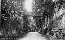 Patshull, Devils Bridge 1898
