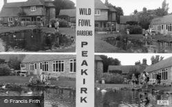 Wildfowl Gardens Composite c.1965, Peakirk