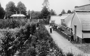 Pell Wall Hall, Kitchen Garden 1911