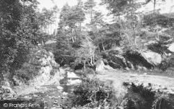 Penmaenpool, View Near 1888