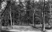 Example photo of Perrywood