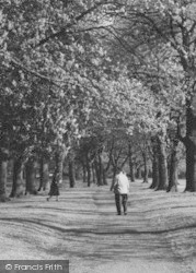 Pershore, Abbey Grounds c.1965