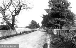 Petersfield, Heath Road And Lake 1898