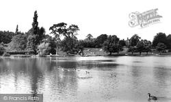 The Lake c.1955, Petersfield