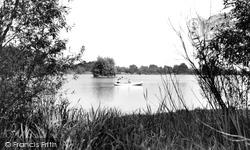 The Pond c.1955, Petersfield