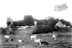 Pevensey, The Castle 1894