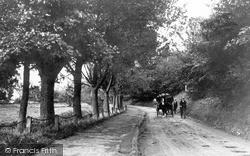 Pickering, New Bridge Road c.1900