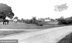 Pilley, The Village And Green c.1955