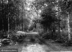 Admirals Walk c.1965, Pirbright