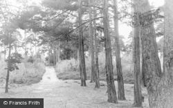 Pirbright, The Pines, Admirals Walk c.1955