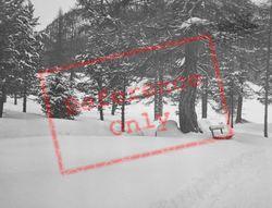 A Snowy View c.1937, Pontresina