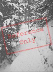Snow c.1937, Pontresina