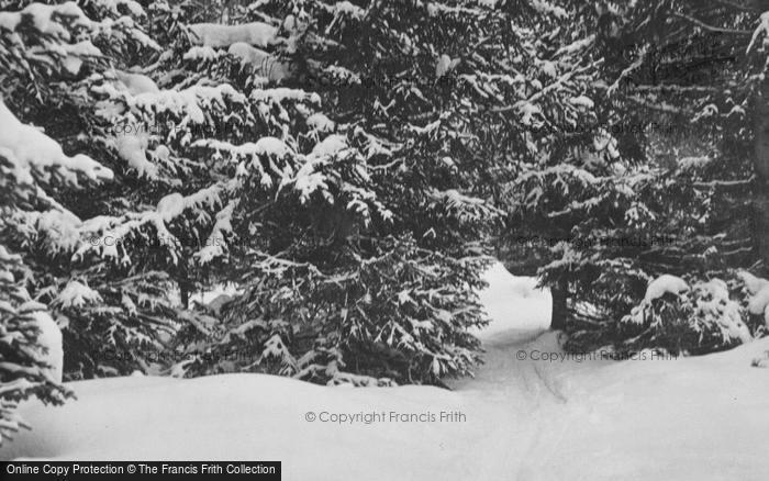 Photo of Pontresina, Snowy Path c.1937