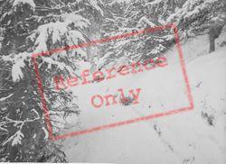 Snowy Path c.1937, Pontresina