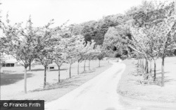 Pontypool, Park, The Gardens c.1960
