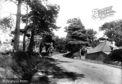 Poole, Parkstone, Castle Hill 1900