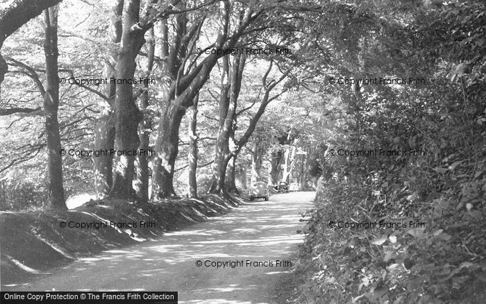 Photo of Poynings, The Beeches c.1955