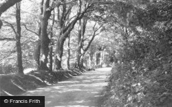 Poynings, The Beeches c.1955
