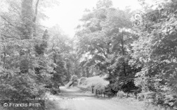 Poynton, Middlewood Road c.1955