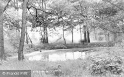 Poynton, Prince Wood c.1955