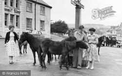 Dartmoor Ponies c.1960, Princetown