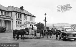 Princetown, Dartmoor Ponies c.1960