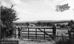 Pulborough, The Downs 1959