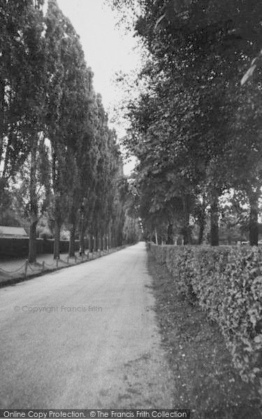 Photo Of Purley Promenade De Verdun Francis Frith
