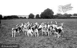 Purley, The South Berkshire Foxhounds c.1960