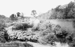 Marlas Mill 1936, Pyle