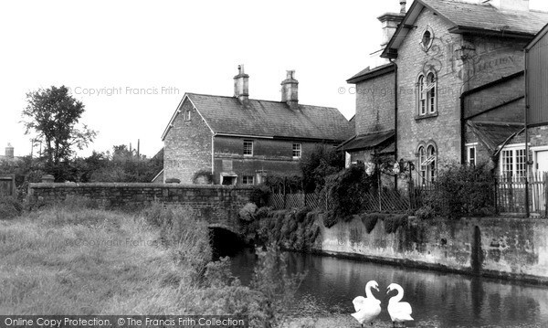 Quemerford,the Mill Stream c1955,Wiltshire