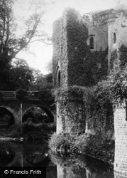 Raglan, Castle And Moat c.1880