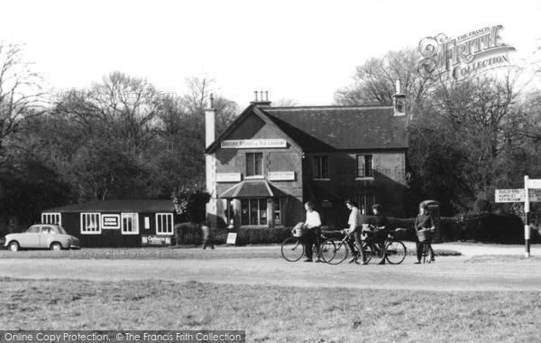 Ranmore Common, c1965